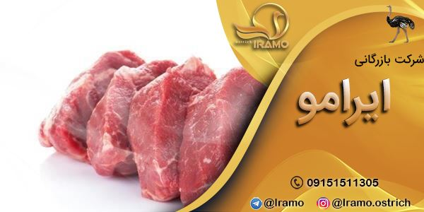 ارائه دهنده گوشت شترمرغ قیمت روز