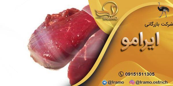 قیمت فروش گوشت شترمرغ با کیفیت