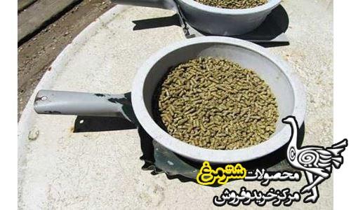 قیمت روز خوراک شترمرغ مولد