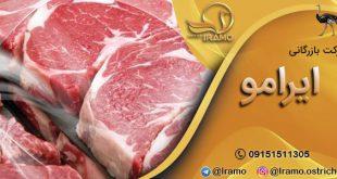 سایت فروش گوشت شترمرغ ارگانیک