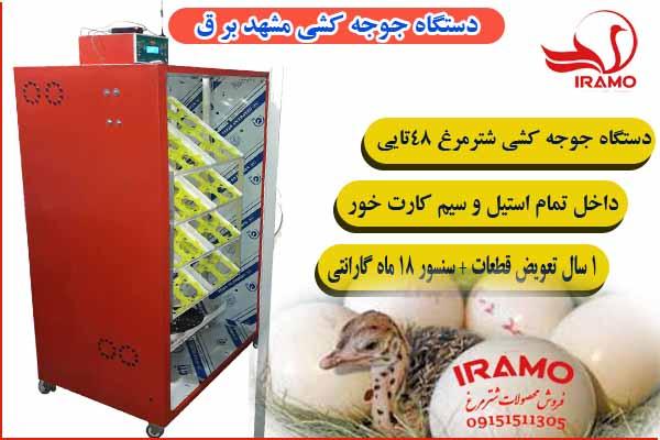 دستگاه جوجه کشی مشهد برق64 تایی شترمرغ
